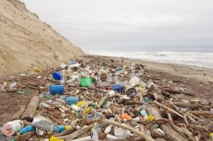 41705352-beach-pollution